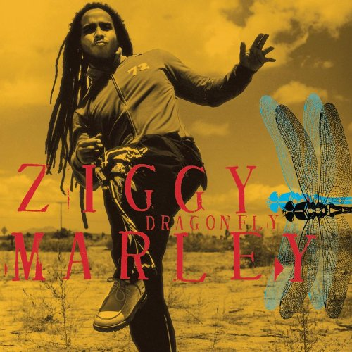 bluefeet Optimism Playlist ziggy marley true to myself maura murphy-barrosse